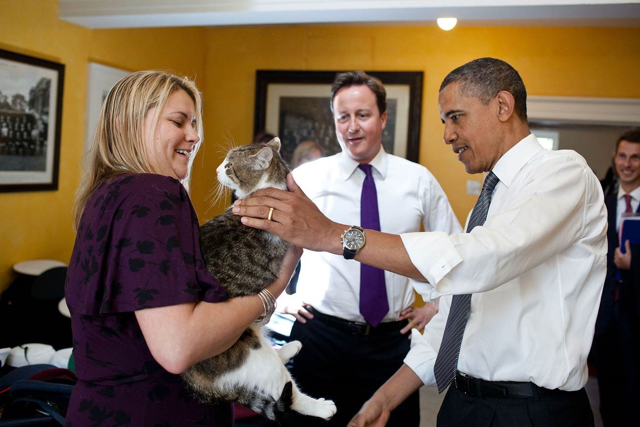 All change - Obama, Cameron but not Larry the cat